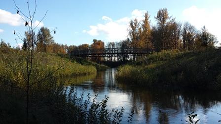 Riverview bridge