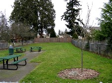 Walnut Grove picnic tables and lawn
