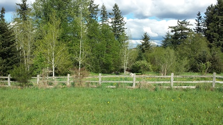Clark Lake split rail fence
