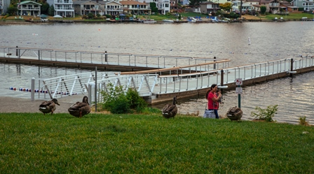 Lk Meridian dock ducks