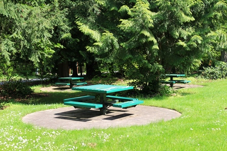 Scenic Hill Park | Parks Without Map | City of Kent